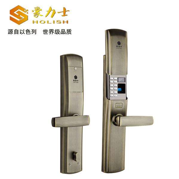L1990F青古铜别墅智能锁