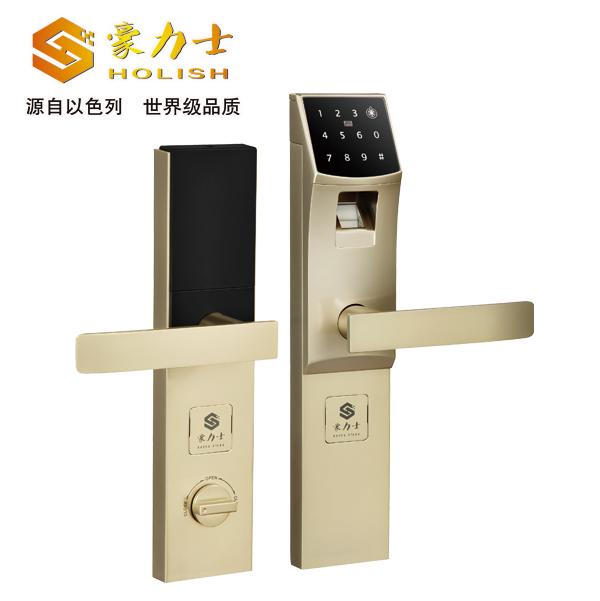 D3310-珍珠叻防盗智能门锁