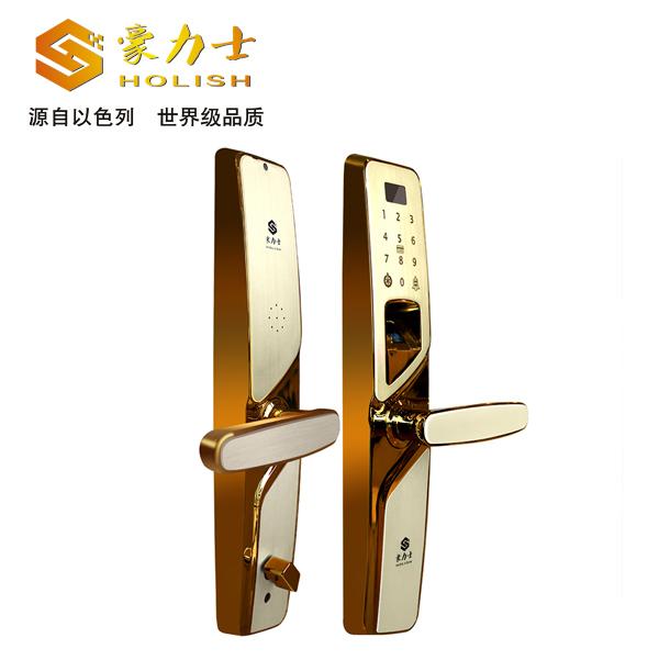 i2016F玫瑰金指纹锁
